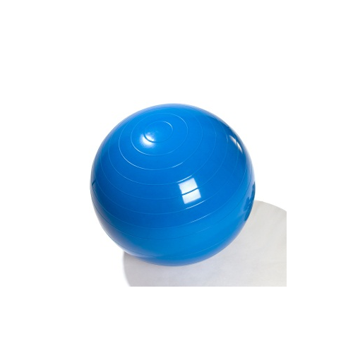 Anti Burst Exercise 65cm Ball