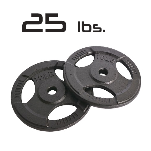 25lbs Cast Iron Grip Standard Plates 1 Inch