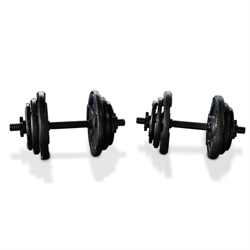 80lbs Cast Iron Grip Standard 1 Inch Dumbbell Weight Set